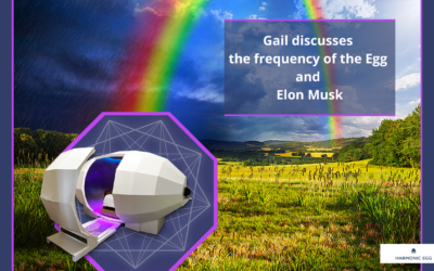 Med Beds, Elon Musk and the Harmonic Egg Frequencies